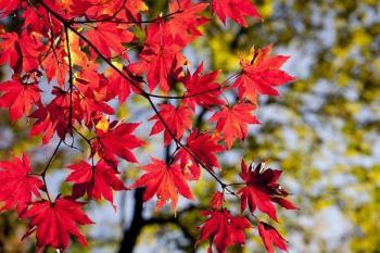 Podzimní prázdniny – 4 tipy na výlet