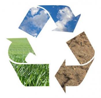 Biologicky rozložitelné plastové tašky jsou budoucností udržitelného rozvoje