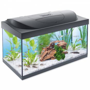 Jak založit akvárium