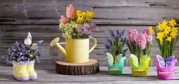 Krásné a moderní květináče povznesou každou místnost